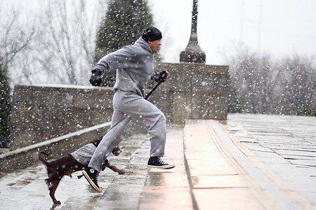 Rocky-balboa-steps-dog_1166560005